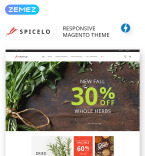 Download Template Monster Magento Theme 69400