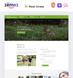 Template 73436 Landing Page Templates