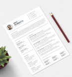 Template 75693 Resume Templates