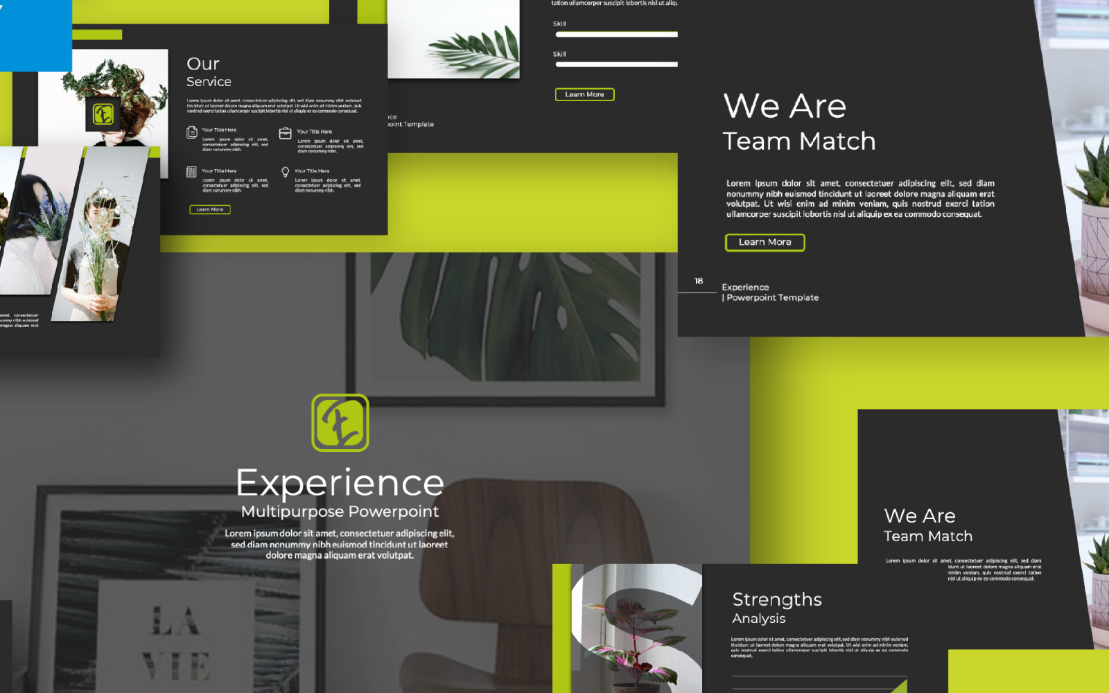 Experience Presentation PowerPoint Template