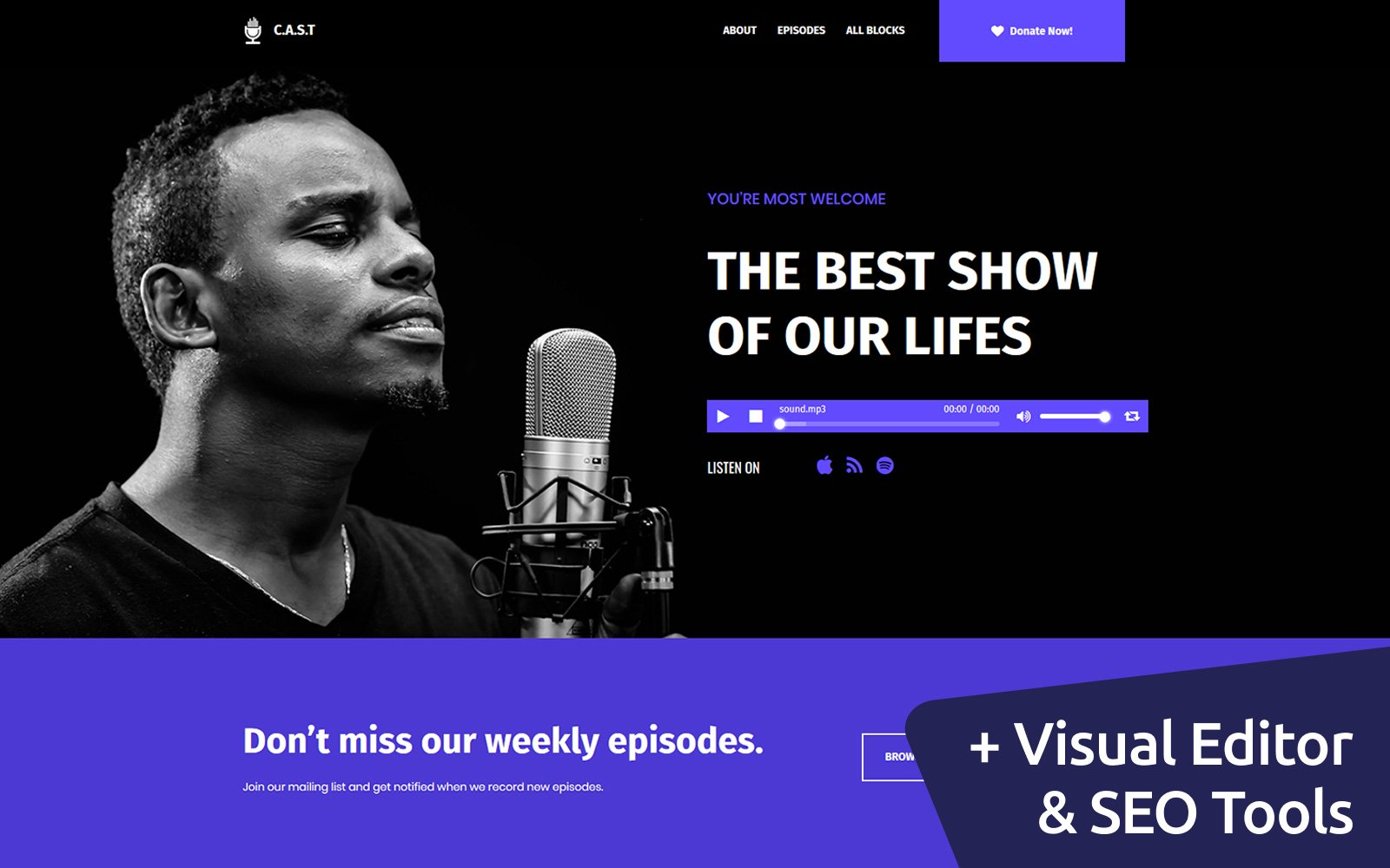 C.A.S.T. - Podcast Landing Page Template