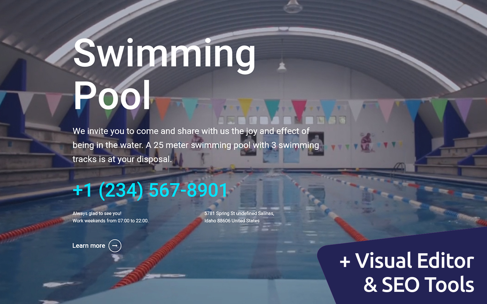 Swimming Pool Moto CMS 3 Template
