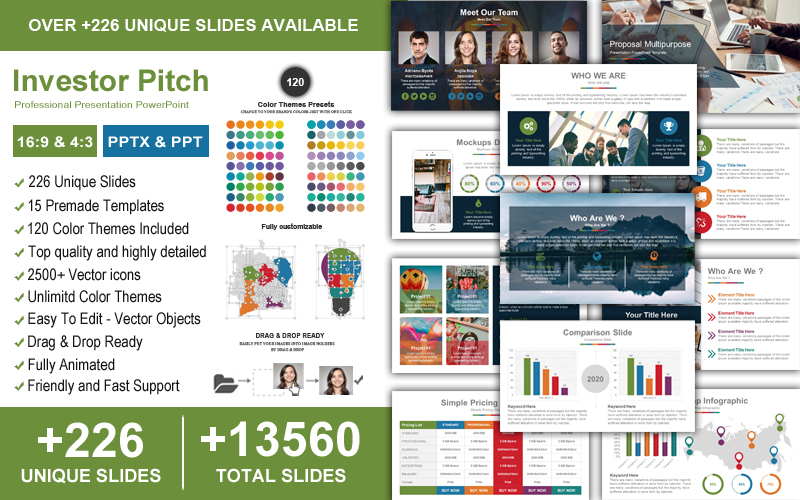 Investor Pitch Professional Business Presentation PowerPoint Template