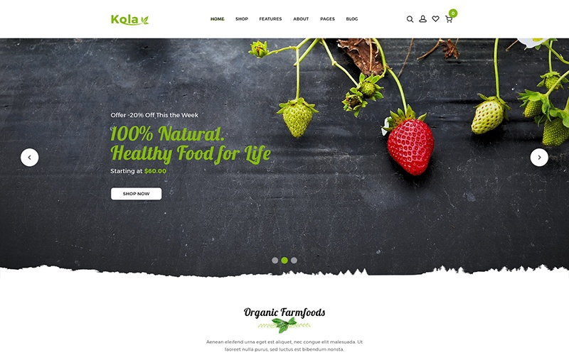 Kalo - Health & Organic Shopify Theme