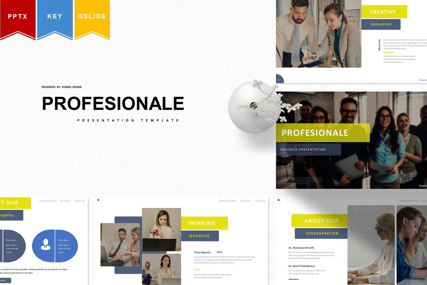 Profesionale | PowerPoint Template