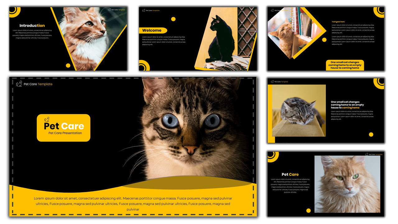 Pet Care - Creative PowerPoint Template