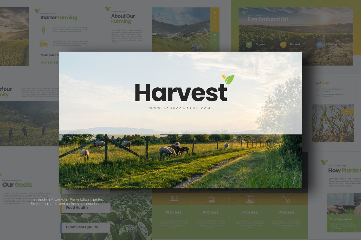 Harvest Presentation PowerPoint Template