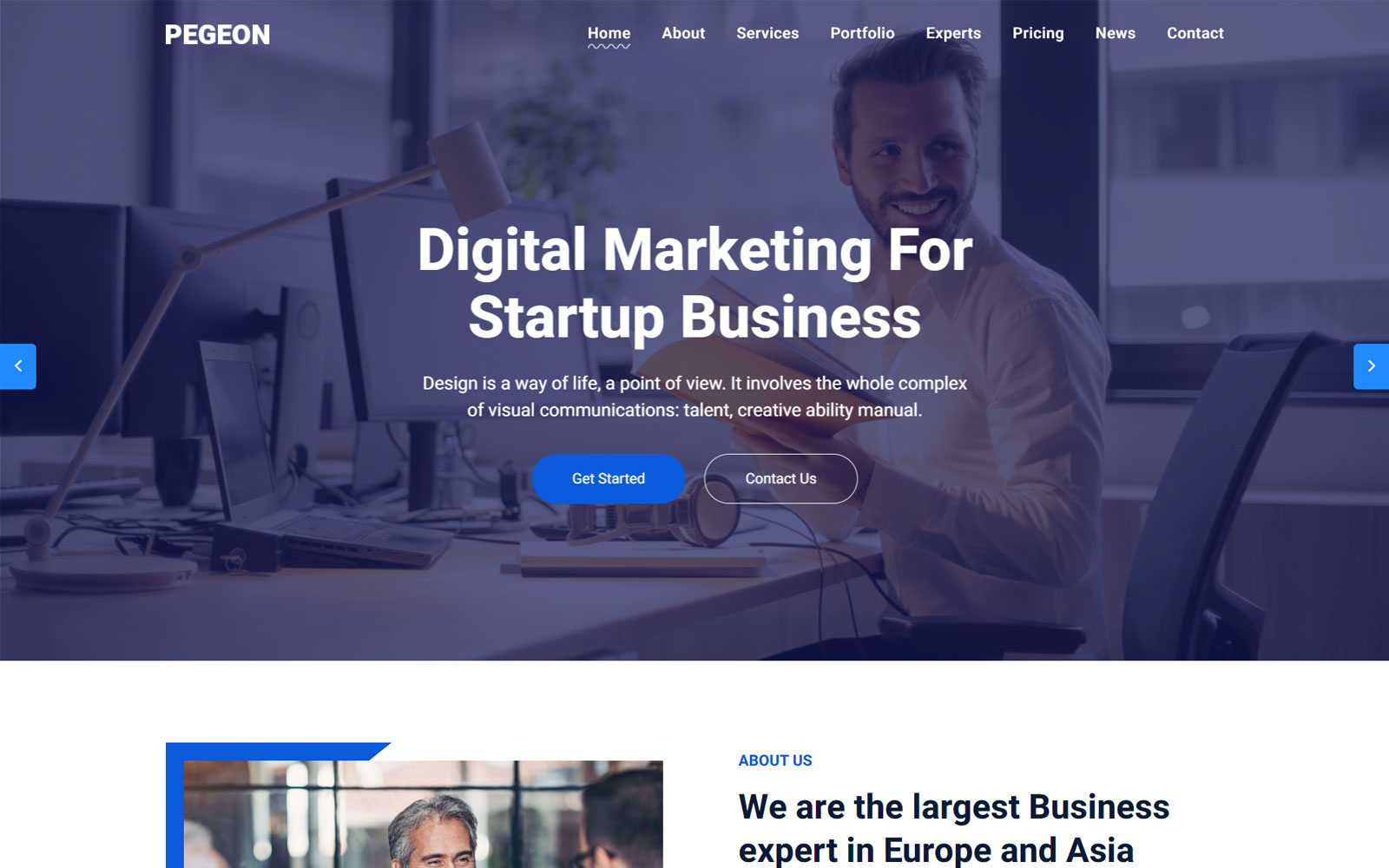 Pegeon - Business and Consulting Landing Page Template