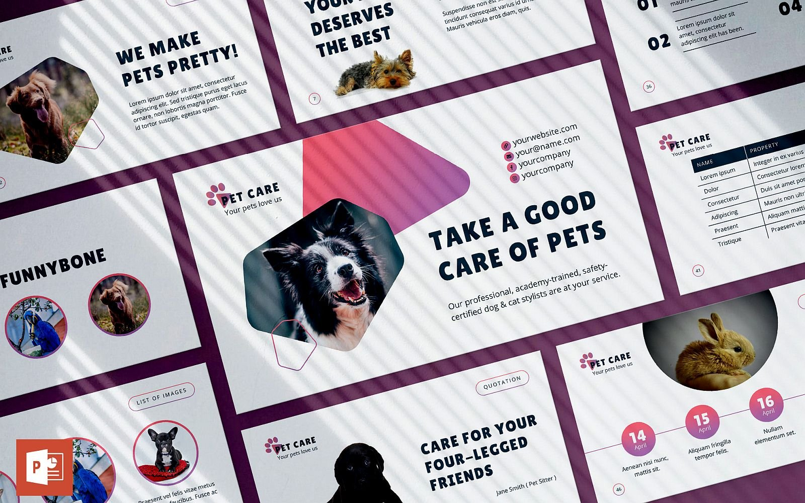 Pet Grooming Care Presentation PowerPoint Template