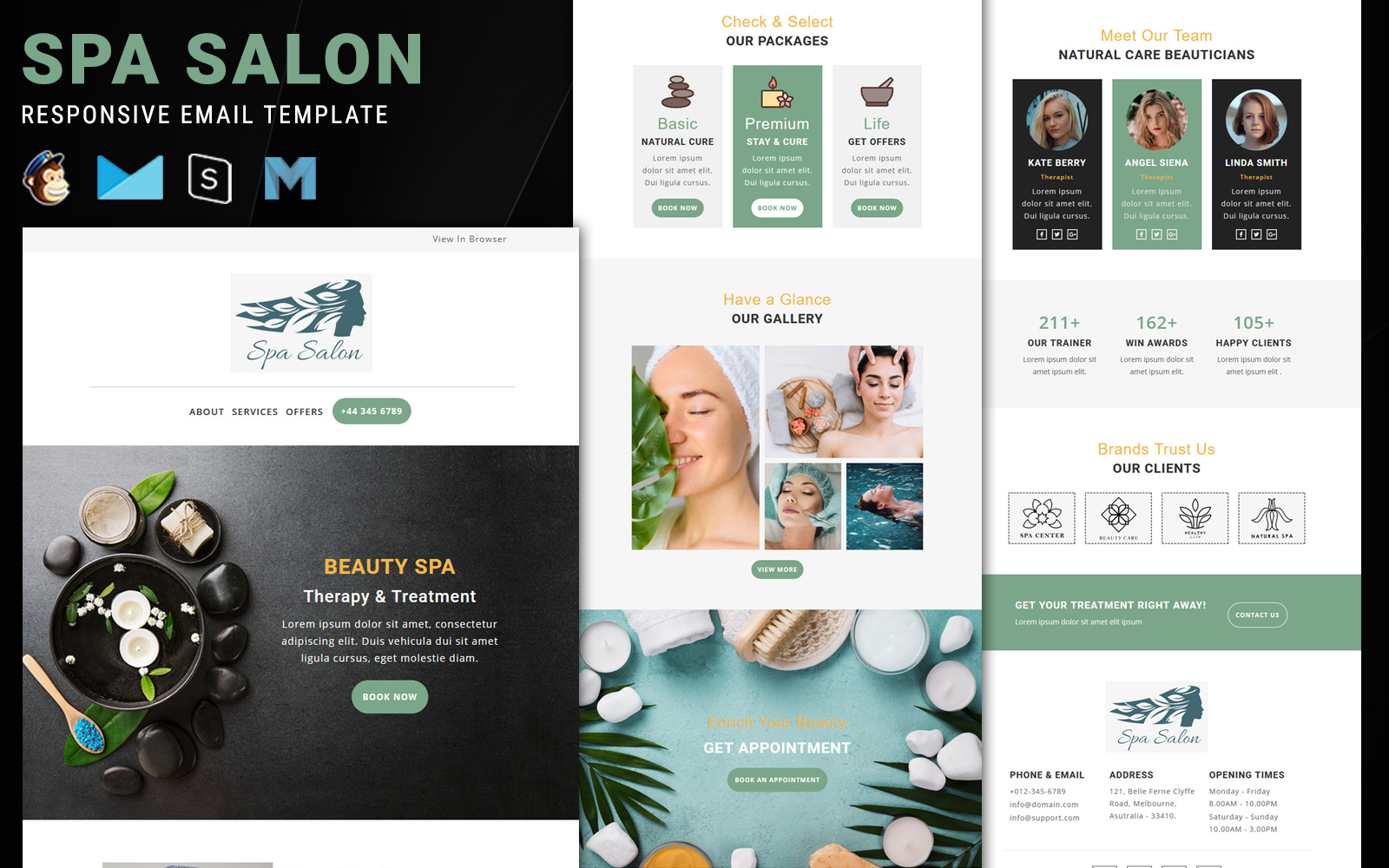 Spa Salon Newsletter Template