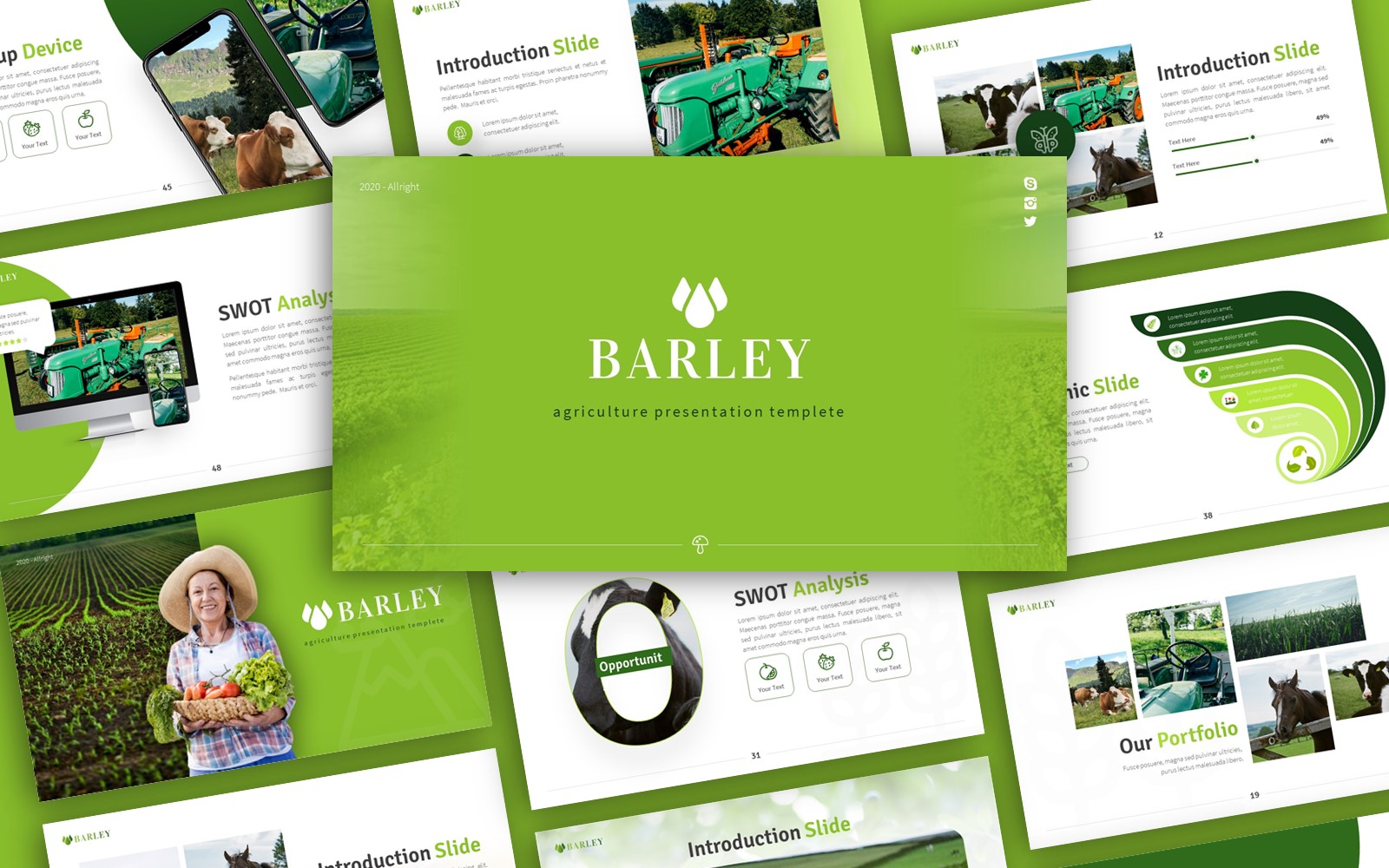 Barley Agriculture Presentation PowerPoint Template