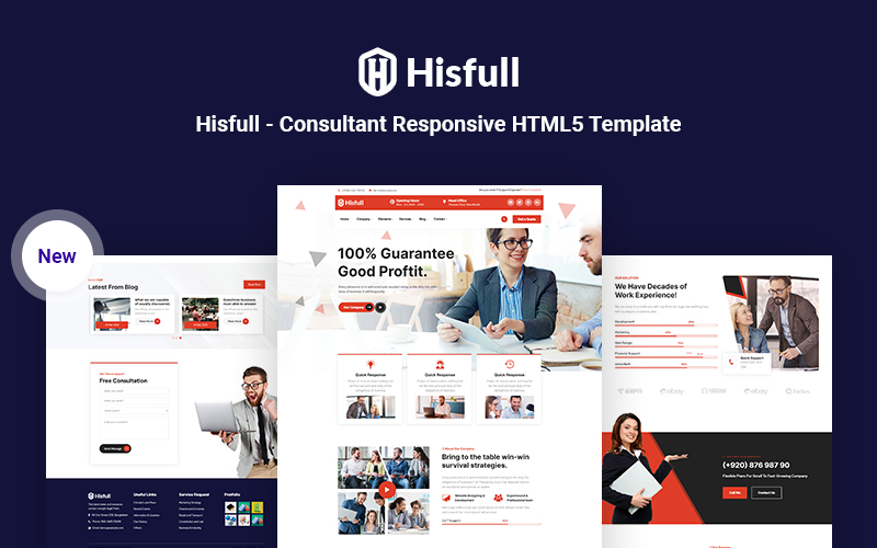 Hisfull - Consultant Responsive HTML5 Website Template