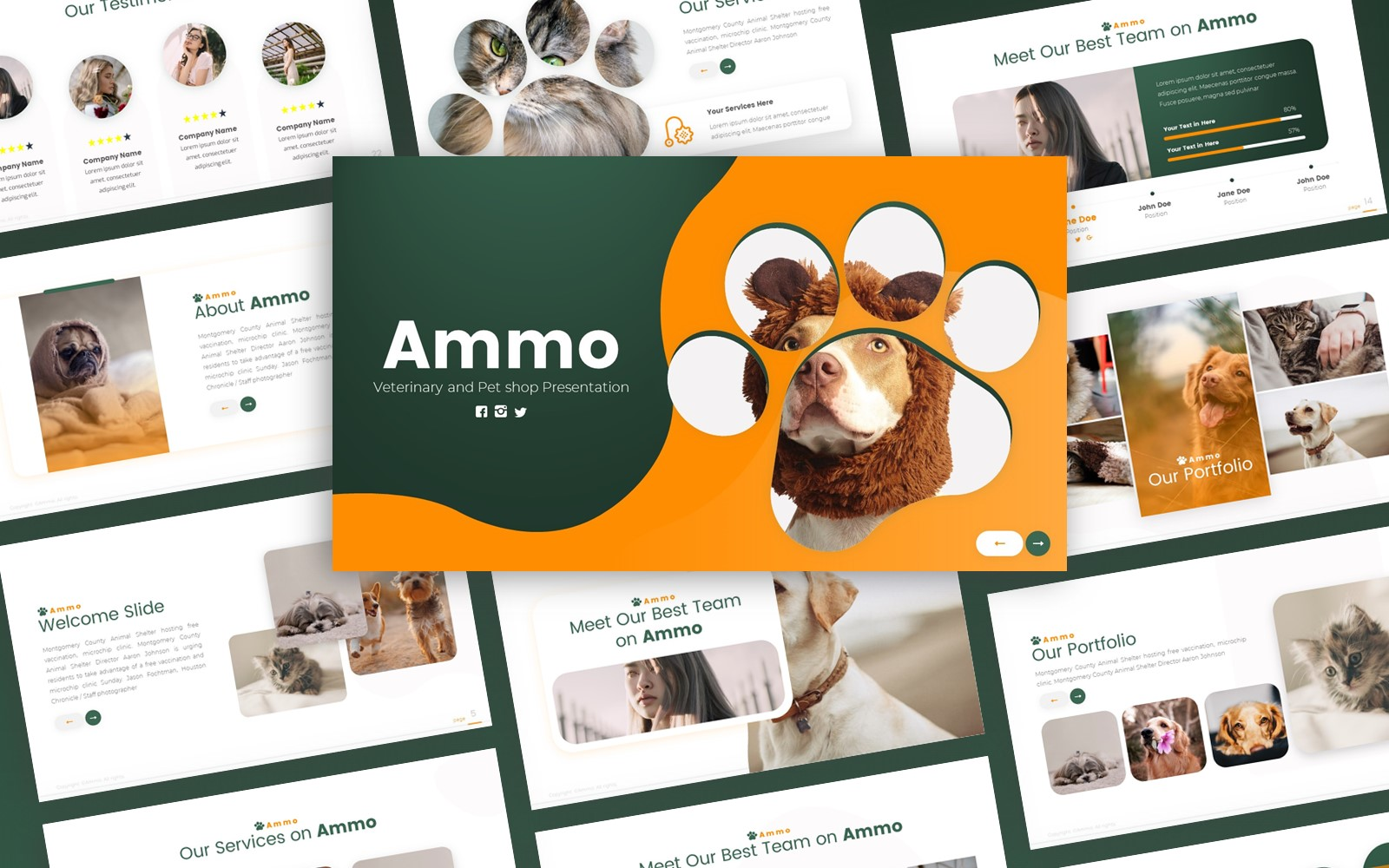 Ammo - Veterinary and Pet Shop PowerPoint Template