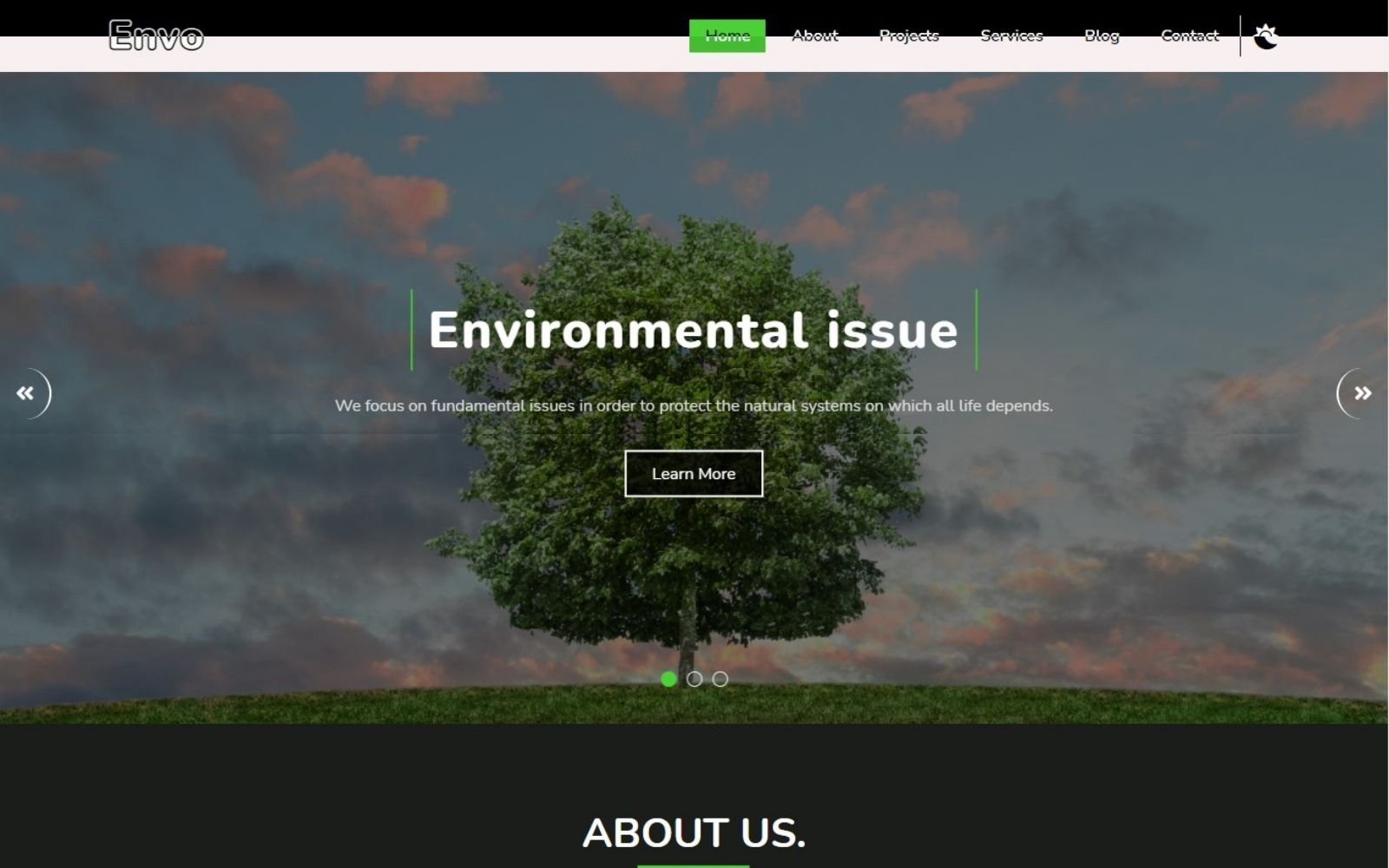 Envo - Environmental Charity Landing Page Template