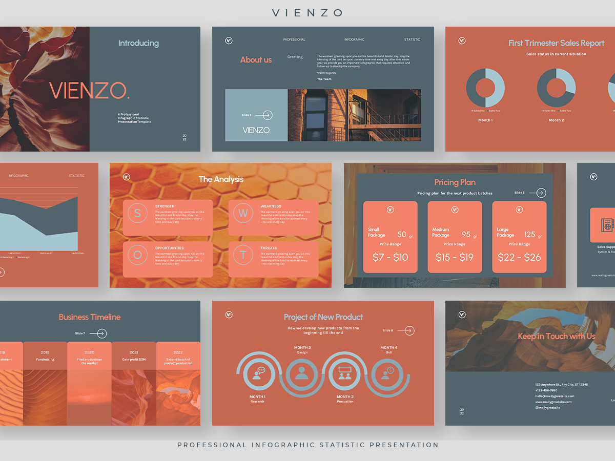 Vienzo - Professional Infographic Statistic Presentation