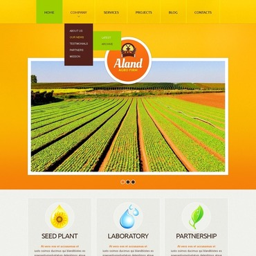 Website Template № 40373