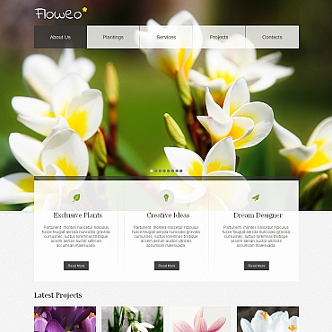 Website Template № 42171