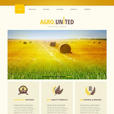 Website Template № 43132