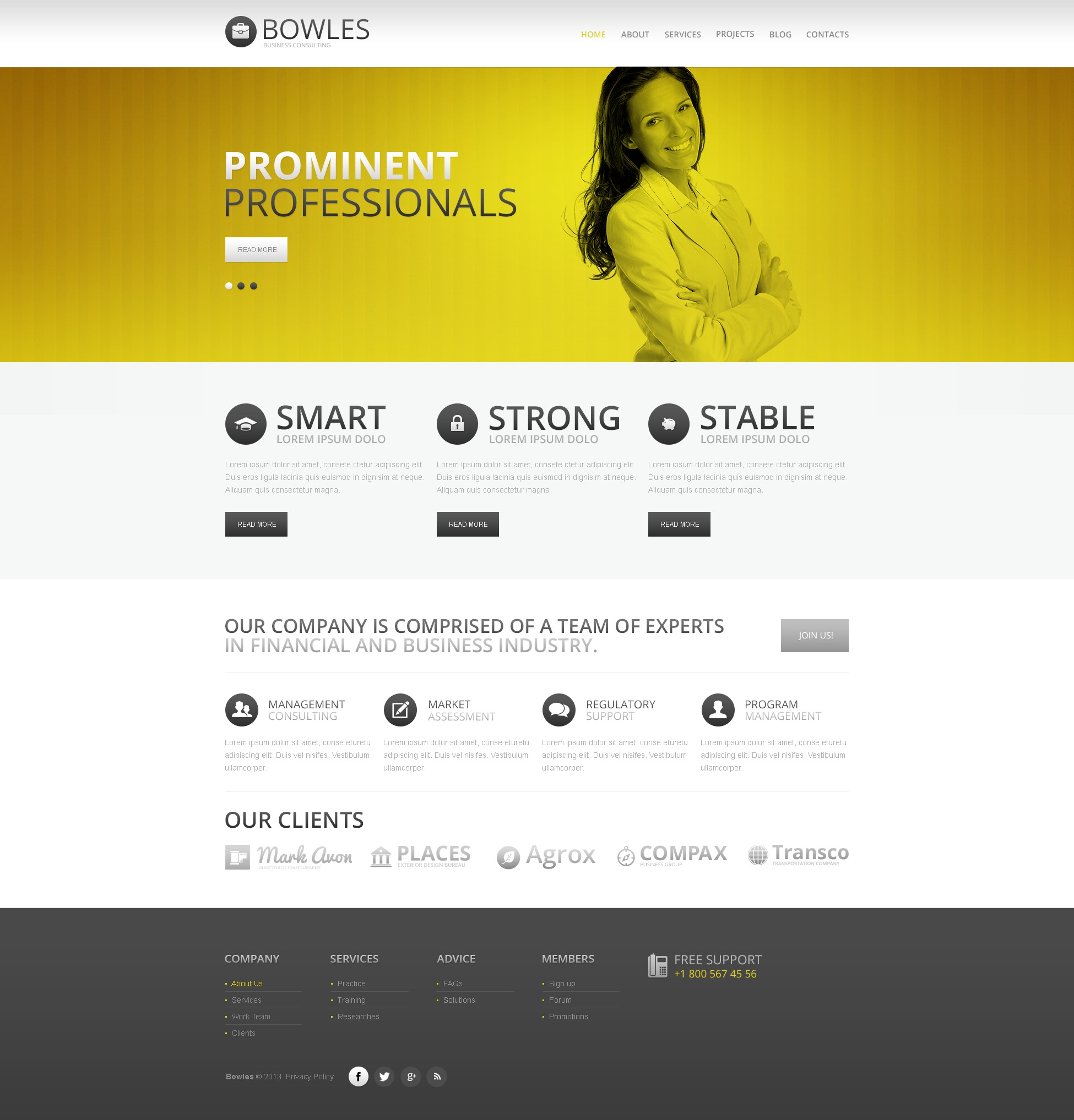 White Consulting Drupal Template