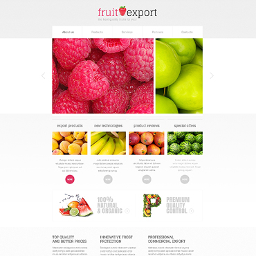 Website Template № 45529