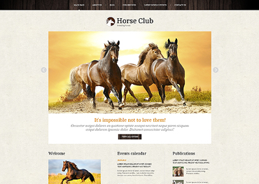 Website Template № 46041