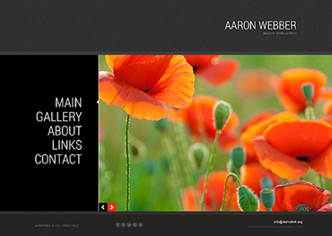 Website Template № 46195
