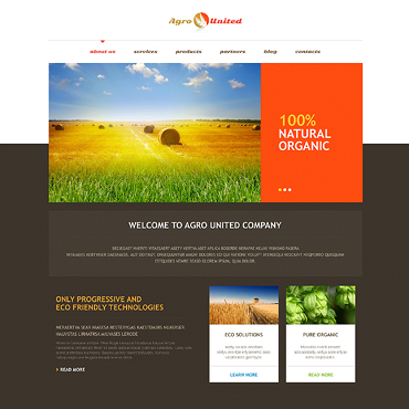 Website Template № 46731