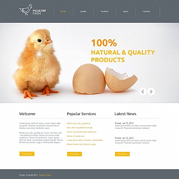 Website Template № 46937