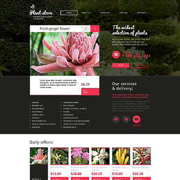 Website Template № 46994