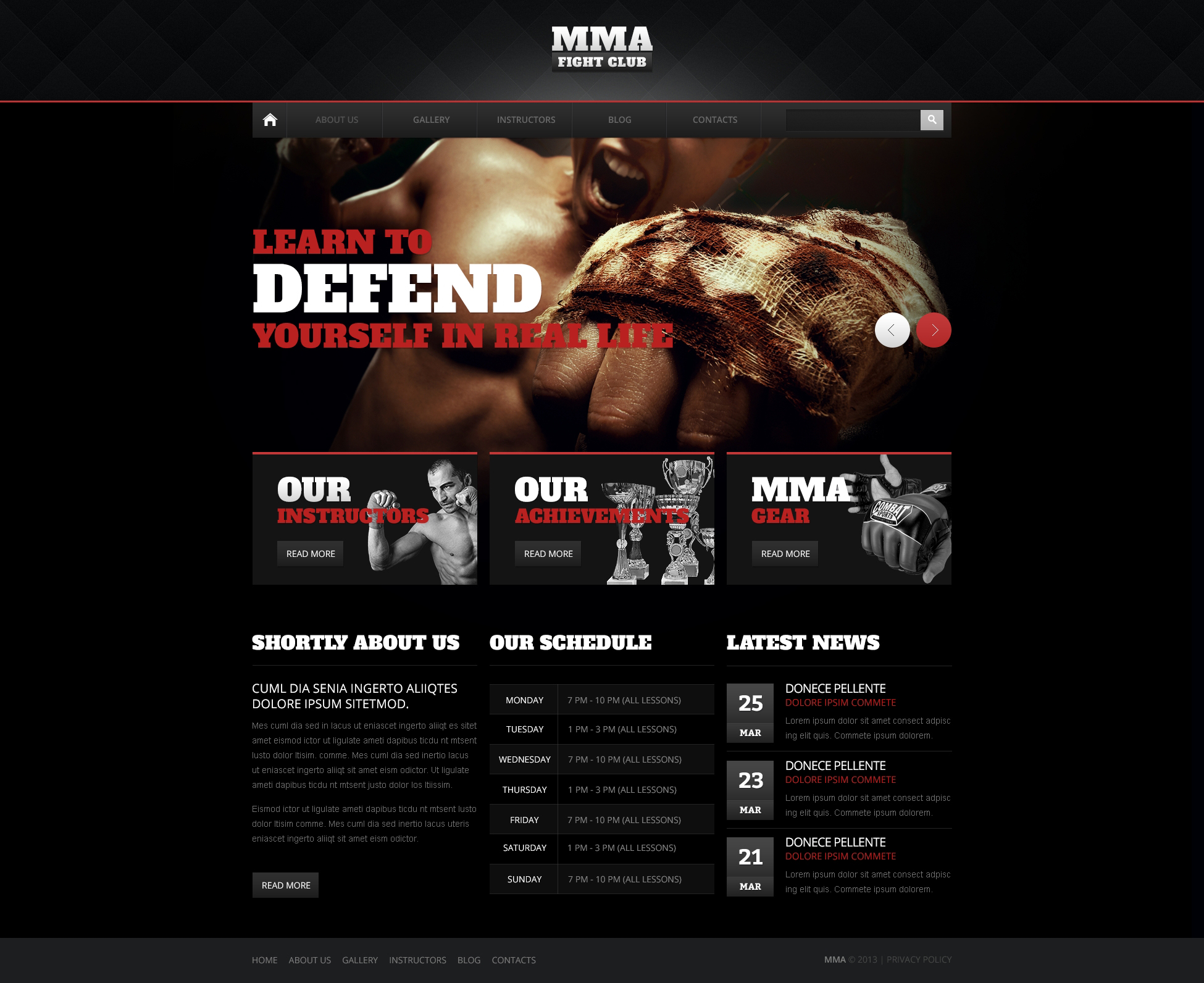 Shocking Martial Arts Drupal Template