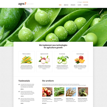 Website Template № 47305