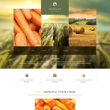 Website Template № 47428