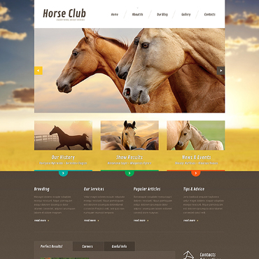 Website Template № 47490