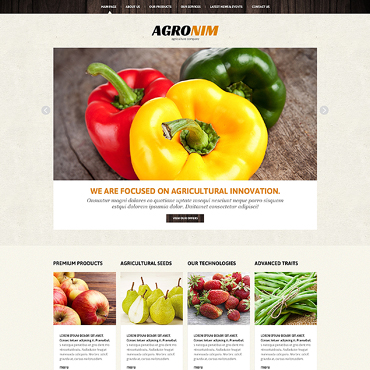 Website Template № 47493