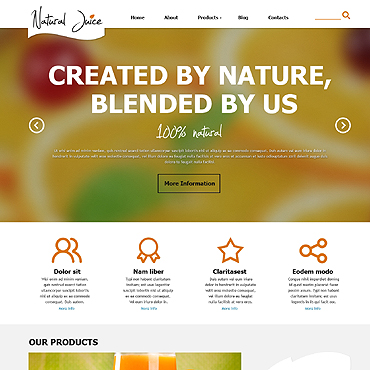 Website Template № 47917