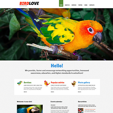 Website Template № 47950