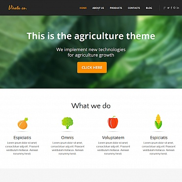 Website Template № 47959