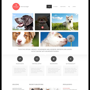 Template Animale de companie WordPress #47998