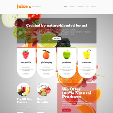 Website Template № 48261