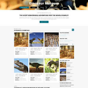 Website Template № 48316