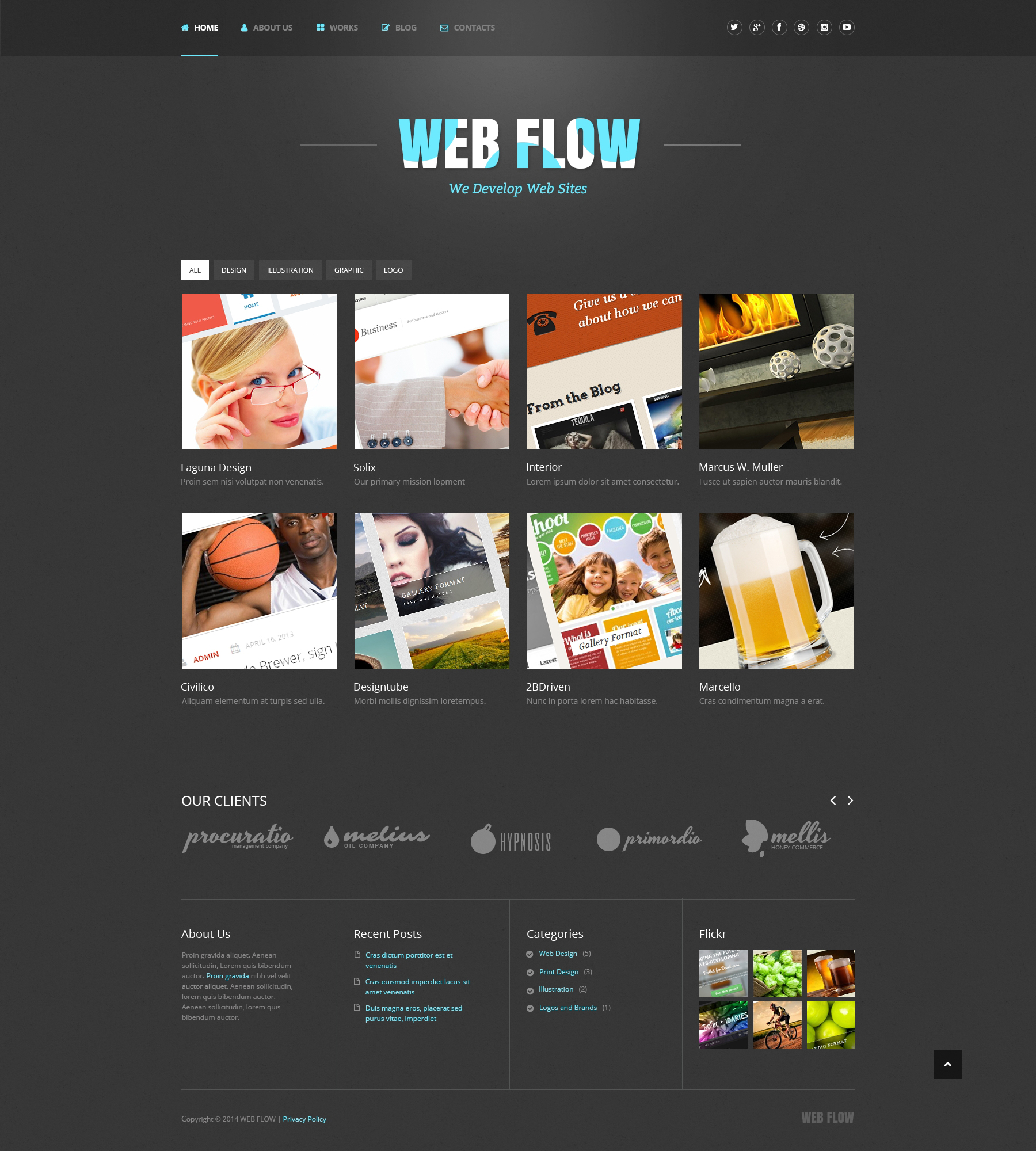 Web Design Responsive WordPress Theme