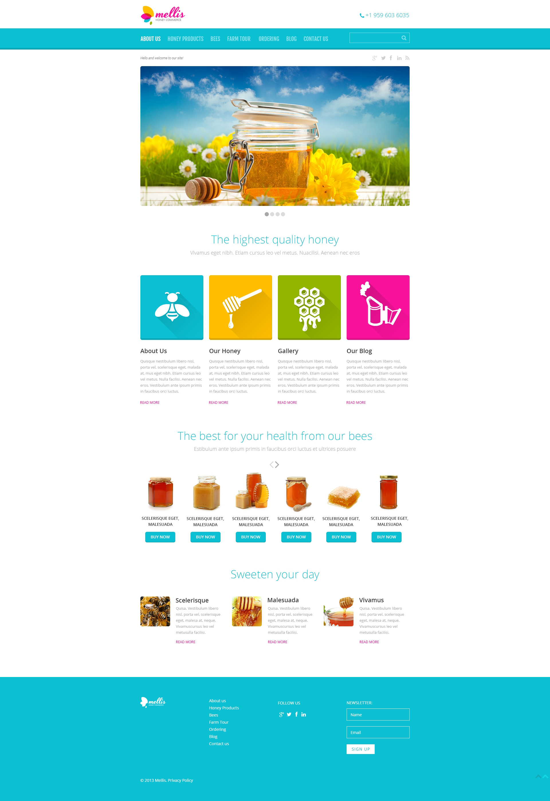Food Store Responsive WordPress Theme