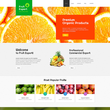 Website Template № 48968