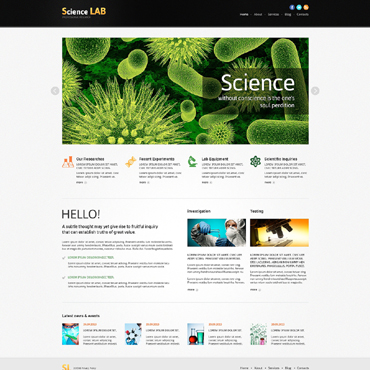 Website Template № 48974