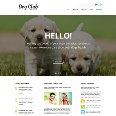 Website Template № 49255