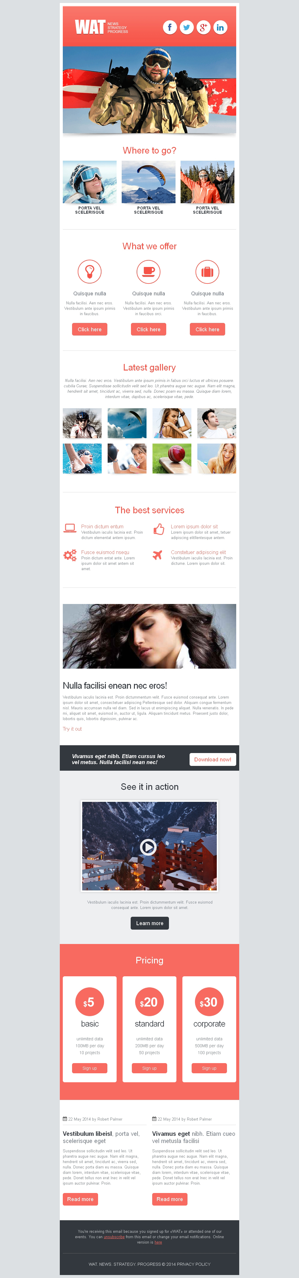 Sports News Responsive Newsletter Template