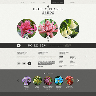 Website Template № 49564