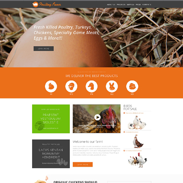 Website Template № 51057