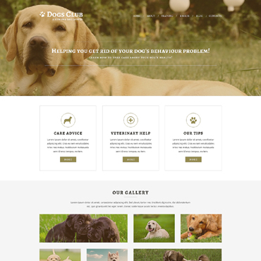 Website Template № 51221