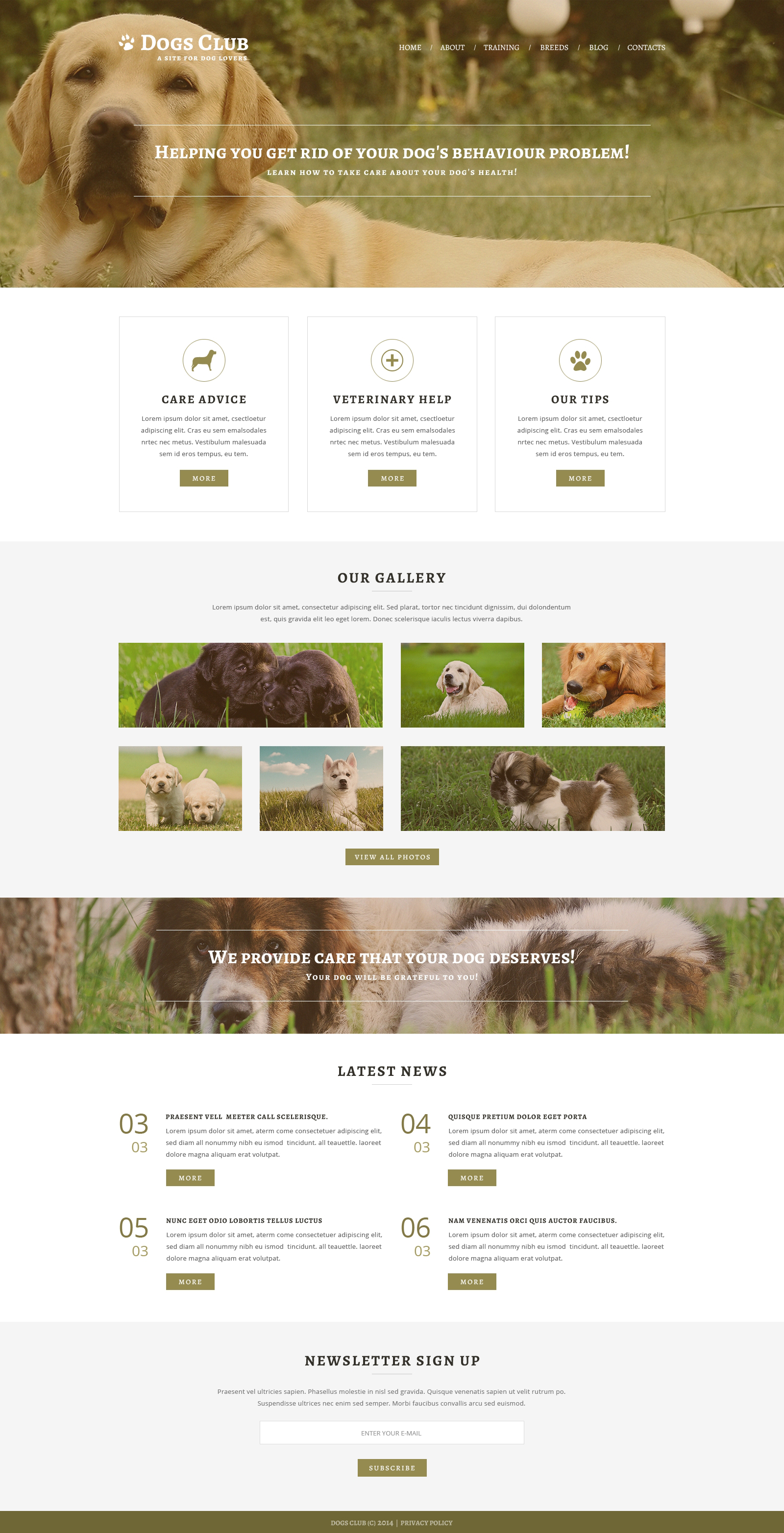 Animals  Pets Joomla Template